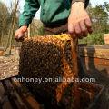 nature multiflora bee honey