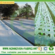 Anti-UV-Landwirtschafts-Abdeckungs-pp. Vliesstoff in der Rolle