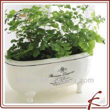 Pots de plantes en céramique délicates