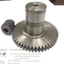 Stainless Steel Worm Gear Set for Motorcycle