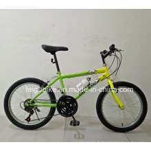 Fabrication Vélo de vélo VTT de 20 vélos à 20 vitesses (FP-KDB-17091)