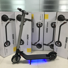 Ninebot Folding KickScooter Adulti ES2