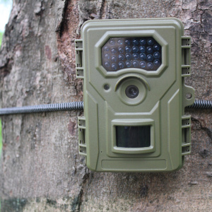 Wide Sudut PIR Animal Detect Trail Camera