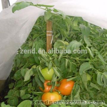 Invernadero aricultural no tejido PP para vegetales