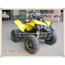 Freio de disco ATV, 125CC ATV (ET-ATV048)