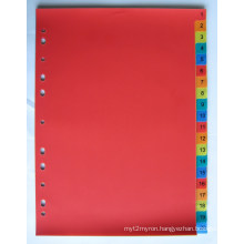 20 Pages Colored PP Index Divider With Number Printed (BJ-9025)