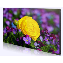 "55"" Super Narrow Bezel 3.5mm Video Wall"