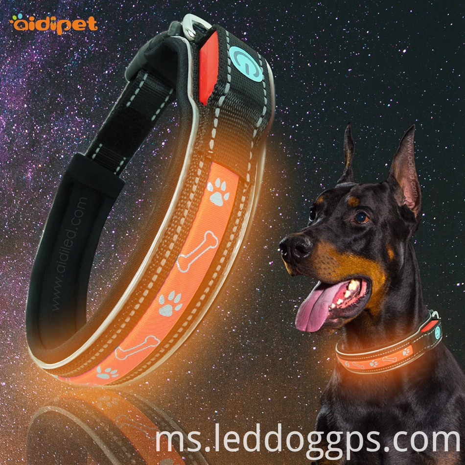 Led Security Dog Collar