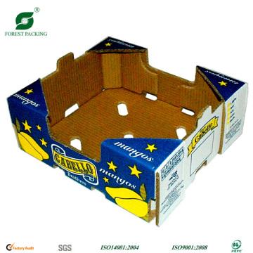 Boîtes à fruits colorés à 5 plis Fp1005