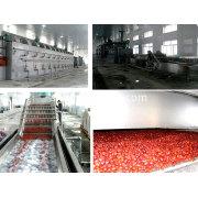 Organic pigment Mesh Belt Drying Machine