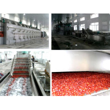 Máquina de secado de correa de malla de pigmento orgánico