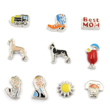 Custom Cute Mixed Design Windows Glass Floating Charms