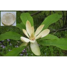 100% Pure Extrait naturel de feuilles de Damiana Poudre / Turnera Aphrodisiaca (extrait pour le sexe)