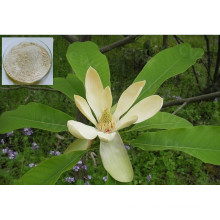 100% Pure Natural Damiana Leaf Extract Powder/Turnera Aphrodisiaca (extract for sex)