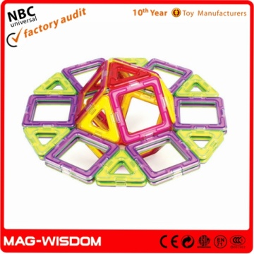 Baby Mag Wisdom Magnetic Toy