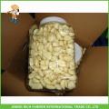 Bonne qualité L'ail pelée fraîche chinoise