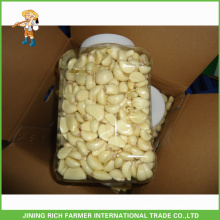 Naturally High Quality Chinese Fresh Peeled Garlic To Australia Market