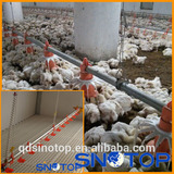 Automatic poultry farm equipment for chicken broiler shed