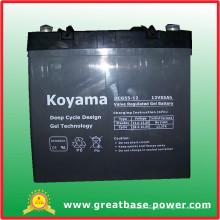 Gute Qualität Deep Cycle Gel Rollstühle Batterie Dcg55-12 (12V 55Ah)