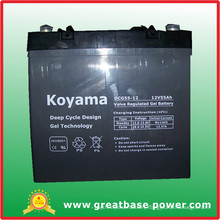 Good Quality Deep Cycle Gel Wheelchairs Battery Dcg55-12 (12V 55Ah)