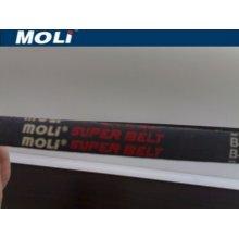 v-belt Moli v-belt