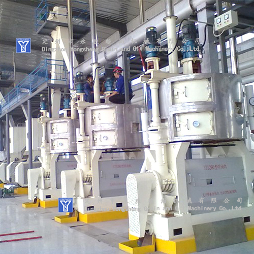 Oil Press Machine Factory