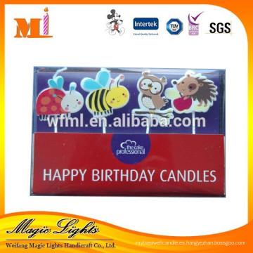 Variedades de velas en forma de animales en caja de PVC