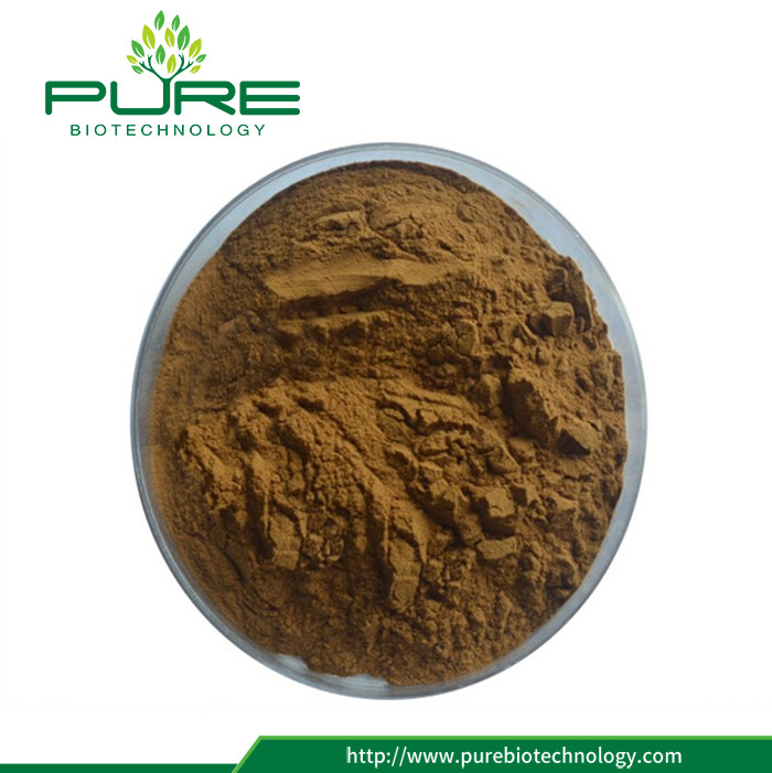 High Quality Pure Nature Cassia Seed Extract (3)