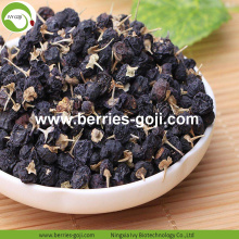 Factory Supply Torkad Wild Black Goji Berry