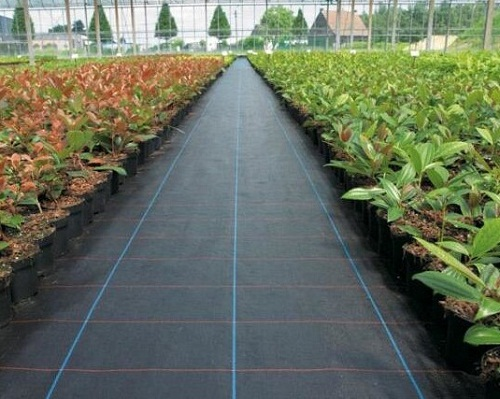 weed-mat-for-prevent-grass-grow-680x430
