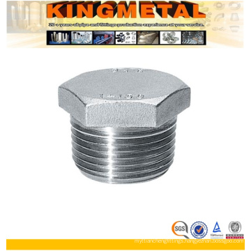 Stainless Steel Hexagonal Male Plug