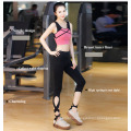 2016 Women Charming Wholesale Sport′s Wear Fitness Wear Yoga Suit