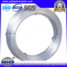 Low Carbon Electro Galvanized Iron Wire with (CE and SGS)