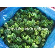 Brócolis congelados com alta qualidade