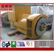 Известный поставщик AC Stamford 1000kw Бесщеточный генератор переменного тока (JDG404G)