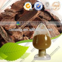 Maritime Pine Bark Extract Oligomeric Proanthocyanidins