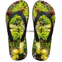 Dernière conception 3D Impression Casual Flip Flop Slipper Chaussures (FF68-13)