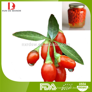 ningxia organic canned fresh goji berries/canned wolfberry/canned goji