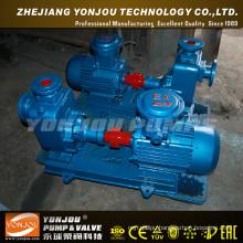 Seawater Pump