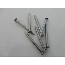 Common Iron Nail