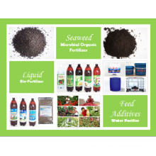 NPK Compound Fertilizer Seaweed Granules