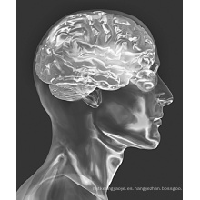 (Citicolina sódica) - Tratamiento de enfermedades cerebrales CAS 33818-15-4 Citicolina sódica