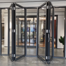 Doppelflügelige Türen aus gehärtetem Glas aus schwarzem Aluminium