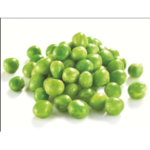 Good quality 100% for Chinese Style Green Peas Passed HACCP Grade A Frozen Green Peas export to Tajikistan Factory