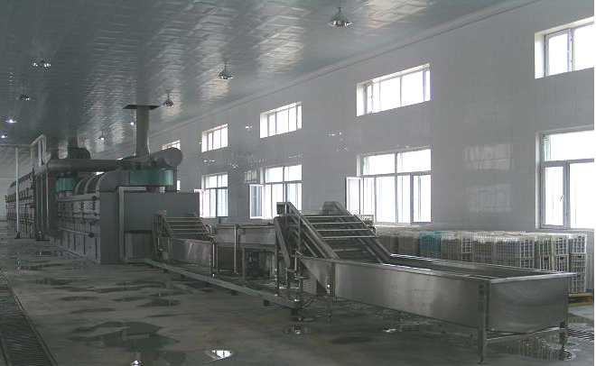 Dw Series Conveyor Dryer / Belt Drier