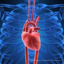 Содержание Таурина сердце системы