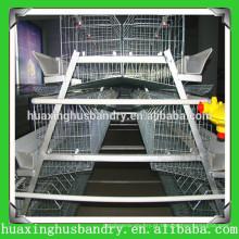 Gaiolas de incubação de produção direta de galinha de camada