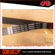 V Ribbed Belt 3911571