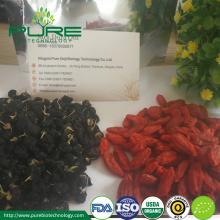 Organic Black Goji Berry from Qinghai-Tibetan Plateau