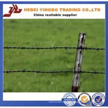 Aire de jeux / Champ / Ferme Fence Protective Barbed Wire